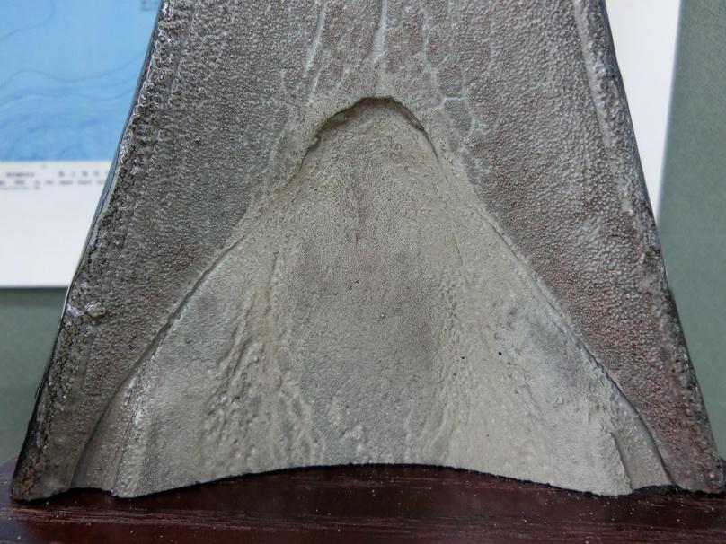 """カジキのダミービル """"ビルの剥製のダミーモデル""""【カジキ・マグロトローリング】_f0009039_13212672.jpg"""