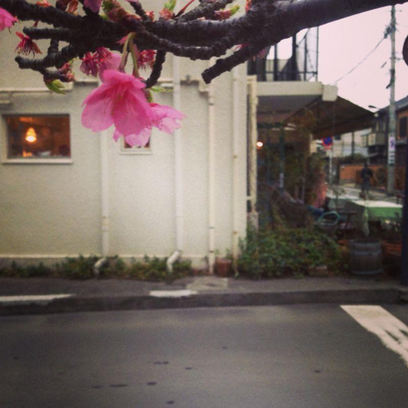 鎌倉の個展を無事終えました。_c0210815_9354854.jpg
