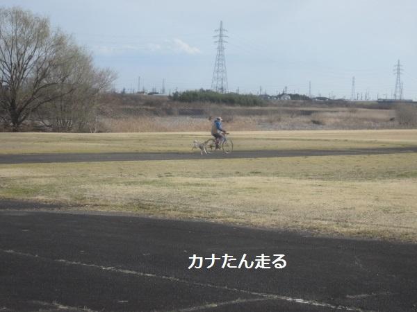 f0143123_921851.jpg