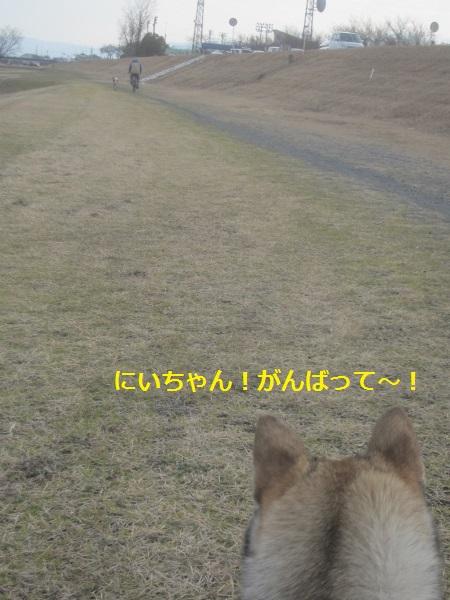 f0143123_963359.jpg