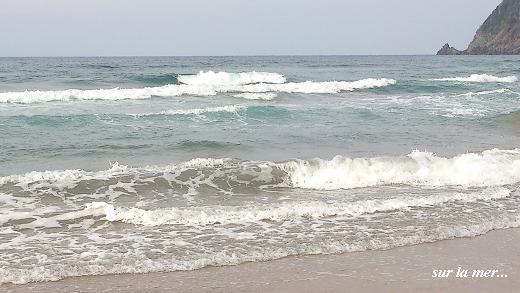 春の海☆早春のおもてなしに癒される・・・♪_c0098807_202503.jpg