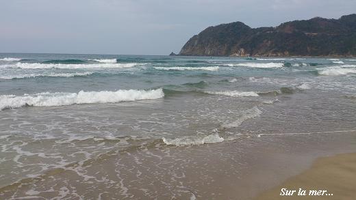 春の海☆早春のおもてなしに癒される・・・♪_c0098807_20474019.jpg