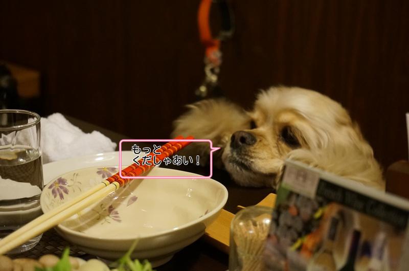 ワンコと旅行 大山旬香お食事編_c0223630_17383242.png