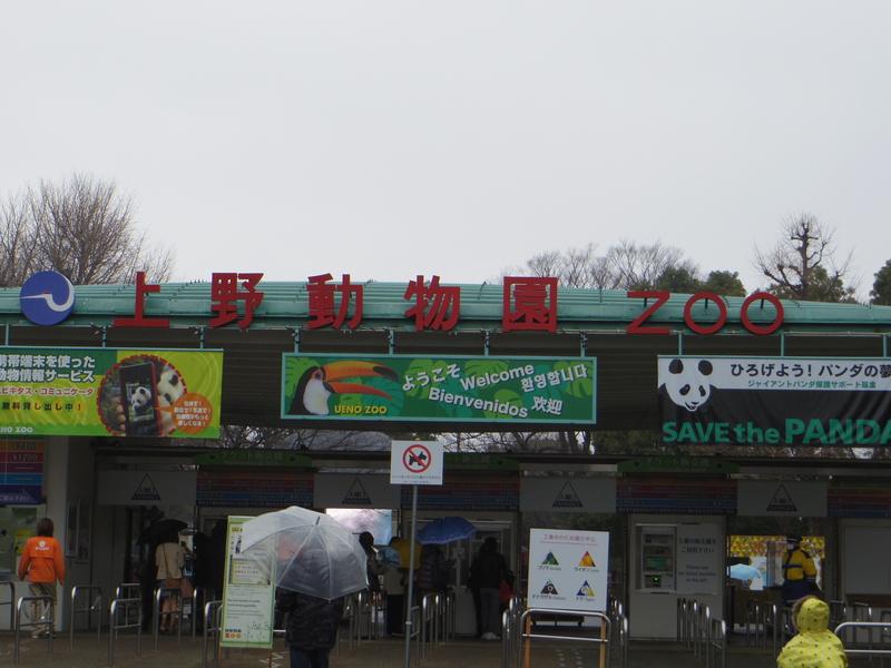 東京へ家族旅行 3月2日編_d0254540_1844980.jpg