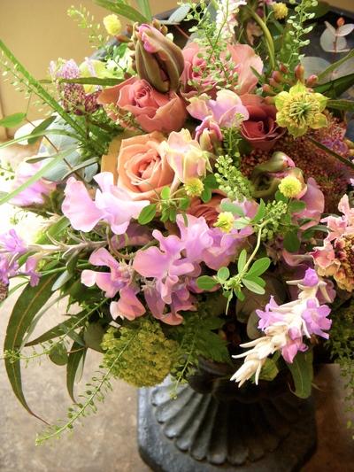 懐かしの草花。。。_a0229658_17404372.jpg