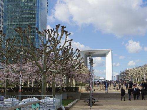 チュイルリー公園でピクニックランチとお散歩とラデファンスの桜_e0123104_512356.jpg