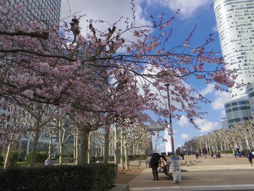 チュイルリー公園でピクニックランチとお散歩とラデファンスの桜_e0123104_5134512.jpg