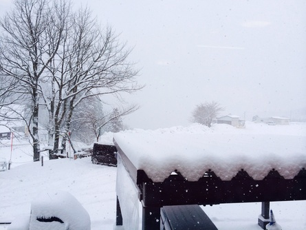 3月6日(木)いぃ雪が降ってます!_f0101226_841730.jpg