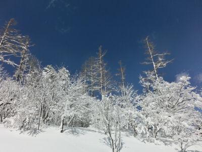 青と白の入笠山_f0019247_23513153.jpg