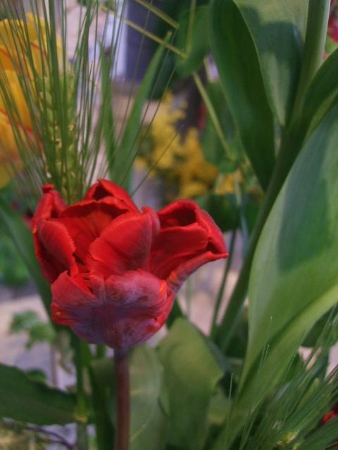オークリーフ花の教室(赤地さんと宮原さんの作品)_f0049672_17415124.jpg