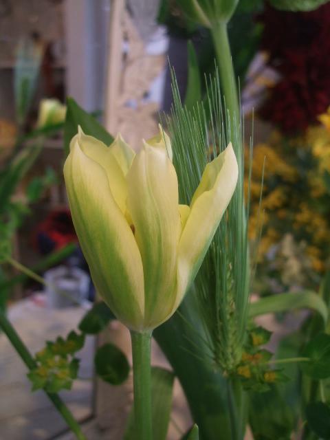 オークリーフ花の教室(赤地さんと宮原さんの作品)_f0049672_17423752.jpg