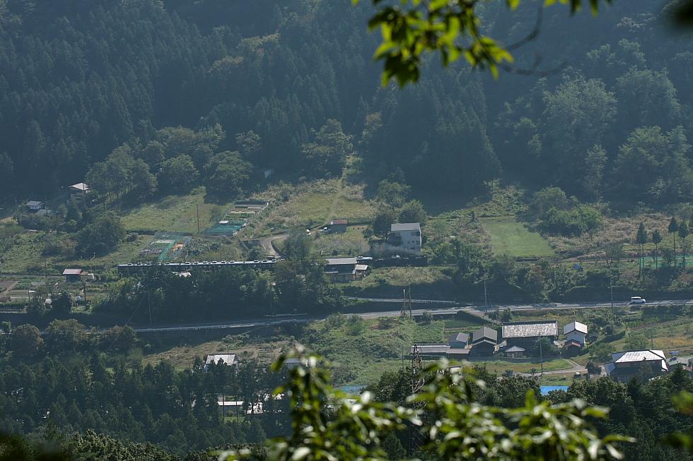 緑の山道 - 2011年・秩父 -  _b0190710_23374437.jpg