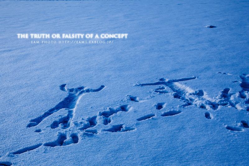 My snow_b0310059_06361297.jpg