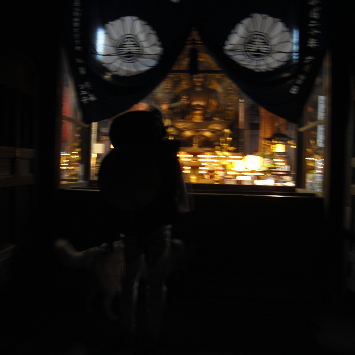 Memory of the second pilgrimage with husky HANA II_c0049299_20541415.jpg