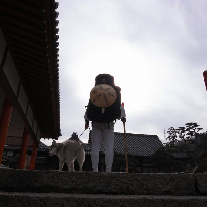 Memory of the second pilgrimage with husky HANA II_c0049299_21104738.jpg