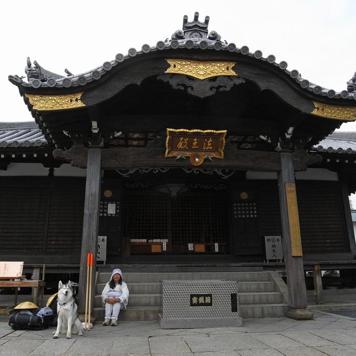 Memory of the second pilgrimage with husky HANA II_c0049299_2111619.jpg