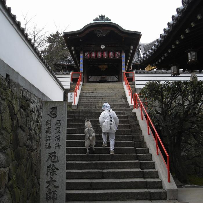 Memory of the second pilgrimage with husky HANA II_c0049299_21135098.jpg