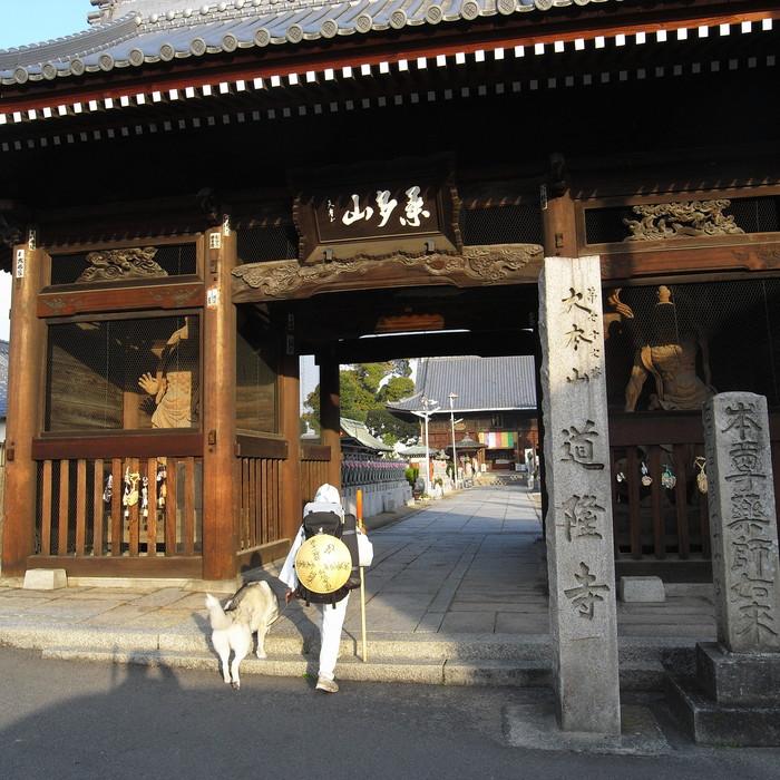 Memory of the second pilgrimage with husky HANA II_c0049299_2122569.jpg