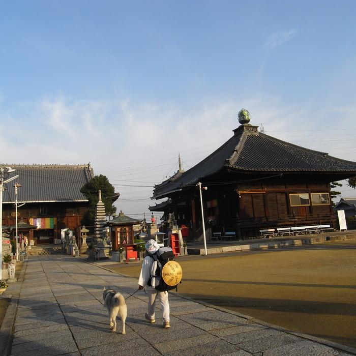 Memory of the second pilgrimage with husky HANA II_c0049299_2165429.jpg