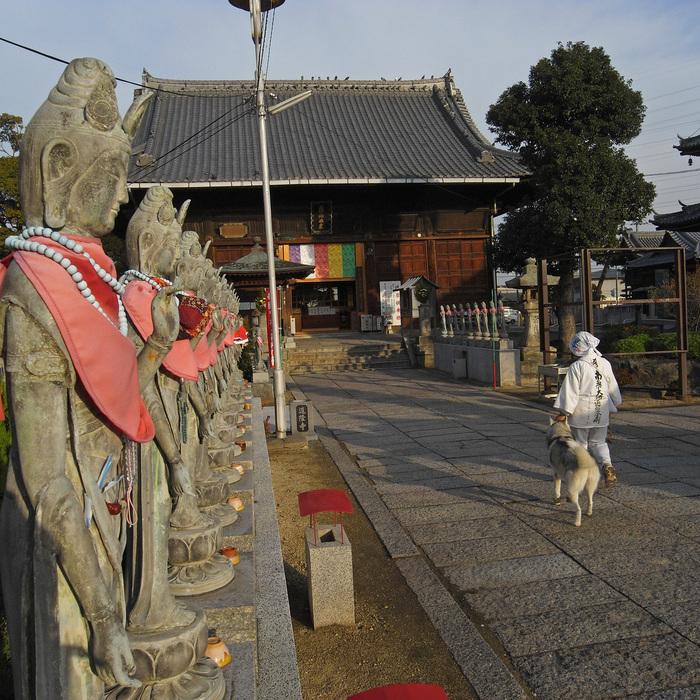 Memory of the second pilgrimage with husky HANA II_c0049299_2173372.jpg