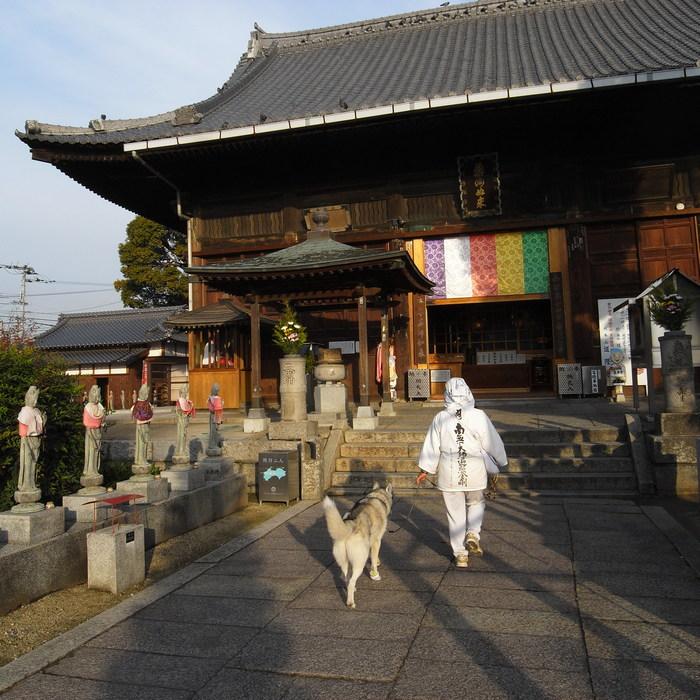 Memory of the second pilgrimage with husky HANA II_c0049299_2174639.jpg