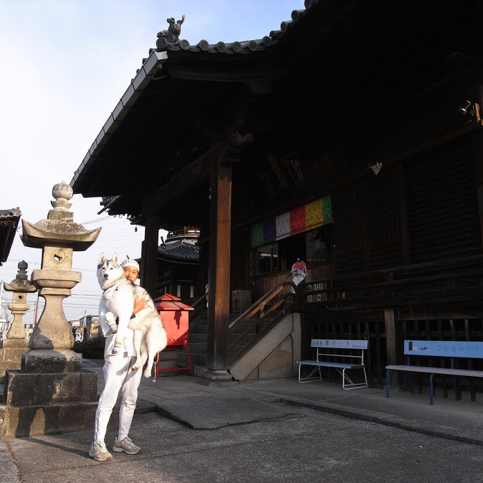 Memory of the second pilgrimage with husky HANA II_c0049299_2182729.jpg