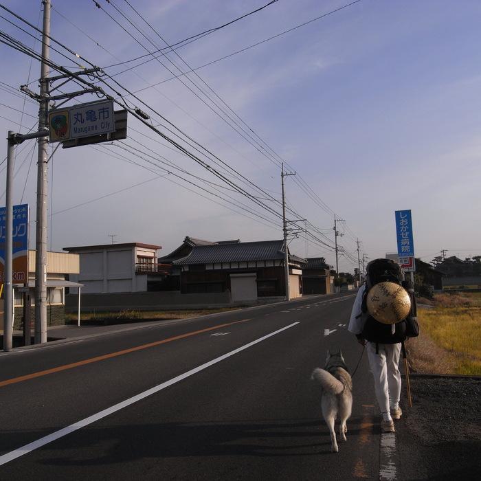 Memory of the second pilgrimage with husky HANA II_c0049299_2184591.jpg