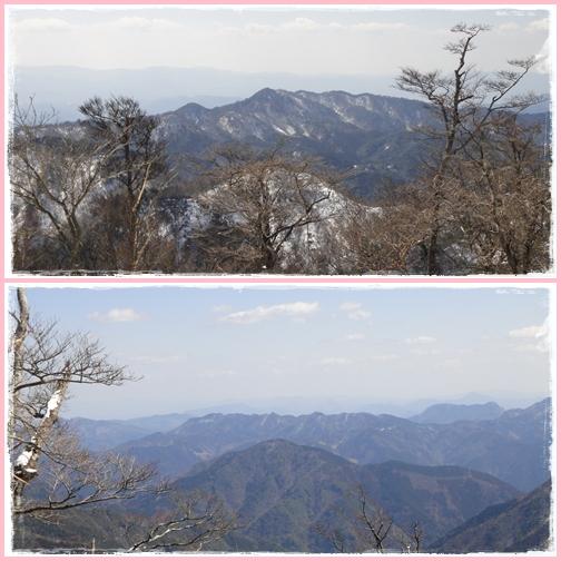山友と英彦山へ・・・セリバオウレン・マンサク_e0164643_1554986.jpg