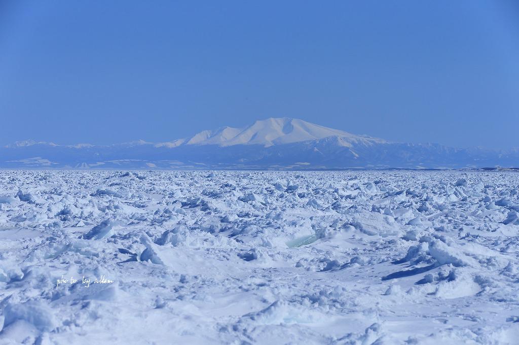 青空と樹氷より~_a0039860_20305952.jpg