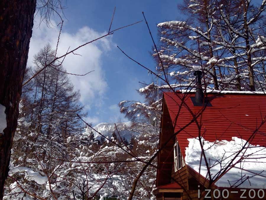 雪国に住む幸せ_c0223095_16365990.jpg