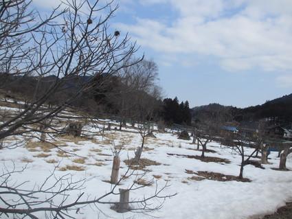 残りの雪@宮ヶ瀬_c0212604_18111027.jpg