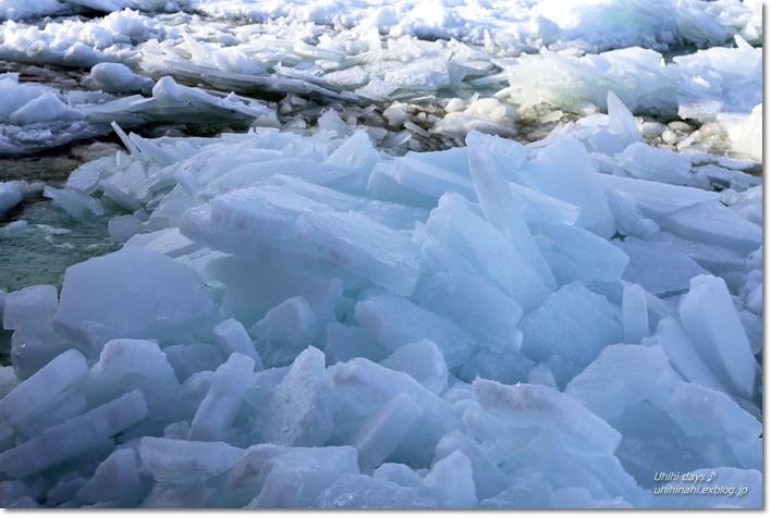 おーろら号で迫力の流氷! @網走_f0179404_17165729.jpg