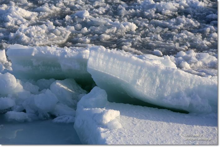 おーろら号で迫力の流氷! @網走_f0179404_17225340.jpg