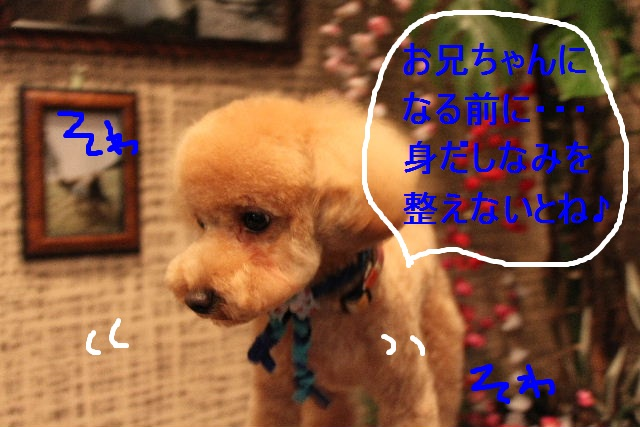 b0130018_22451841.jpg