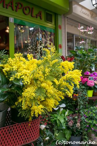 黄色だらけの日_c0024345_962789.jpg