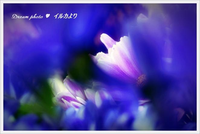 f0304384_18581281.jpg