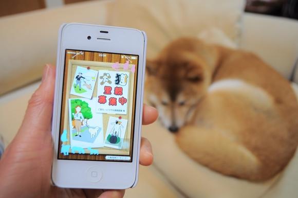 犬猫里親募集アプリ_a0126590_0483285.jpg