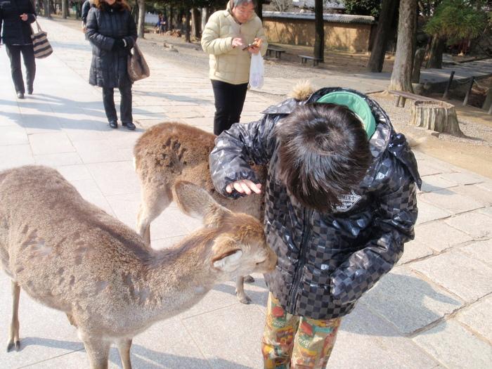 奈良へ_a0210112_2014478.jpg