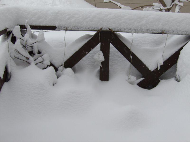 再び雪に埋もれた札幌_c0025115_18592596.jpg