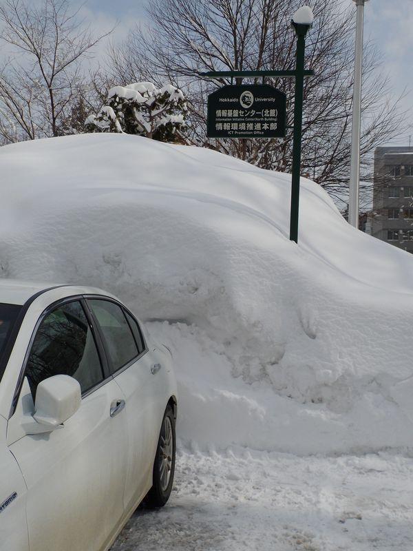 再び雪に埋もれた札幌_c0025115_1922034.jpg