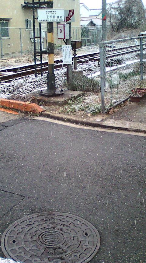 まだまだ冬の悪あがき?!雪です。_e0094315_7282858.jpg