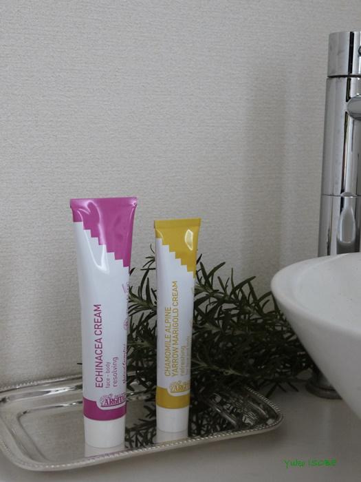 オーガニックの歯磨き粉_a0169924_92028.jpg