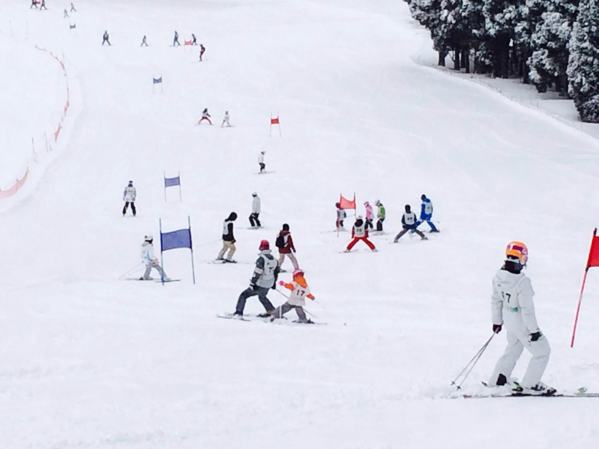 【 第7回 親子deスキー大会 】_f0101226_16532266.jpg