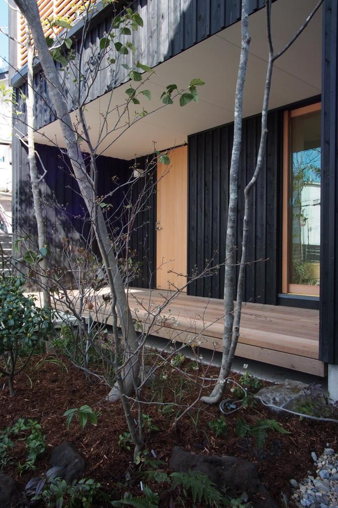 庭ありきの家、家ありきの庭_d0122640_1637142.jpg