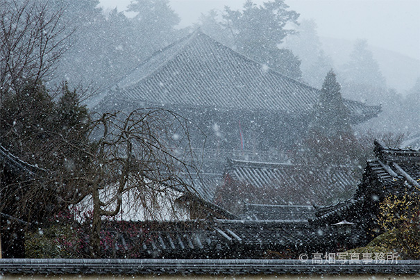 東大寺二月堂に降る雪  Falling Snow and NIGATSUDO Cathedral._e0245846_167454.jpg