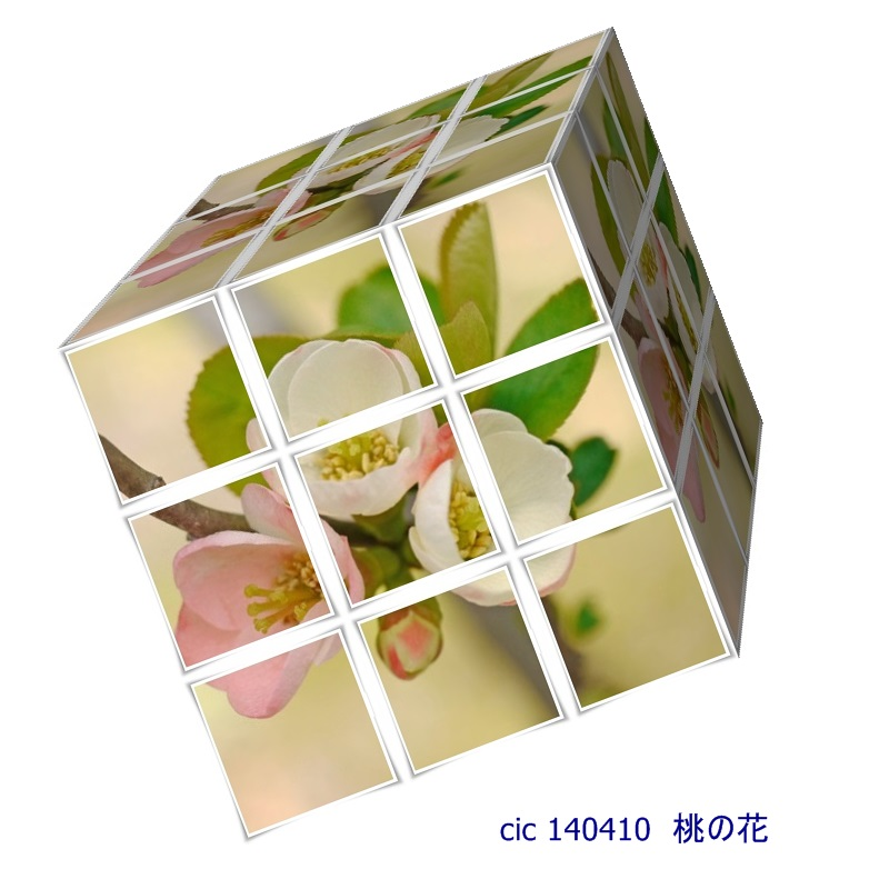 e0231557_2025435.jpg