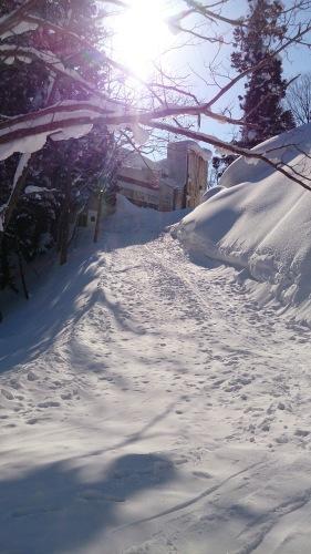 2014.02 JTCCホテルジャパン赤倉 スキーの事、書かないと_e0219520_14455370.jpg