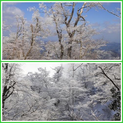 今季最後かなぁ~英彦山の霧氷_e0164643_1559863.jpg