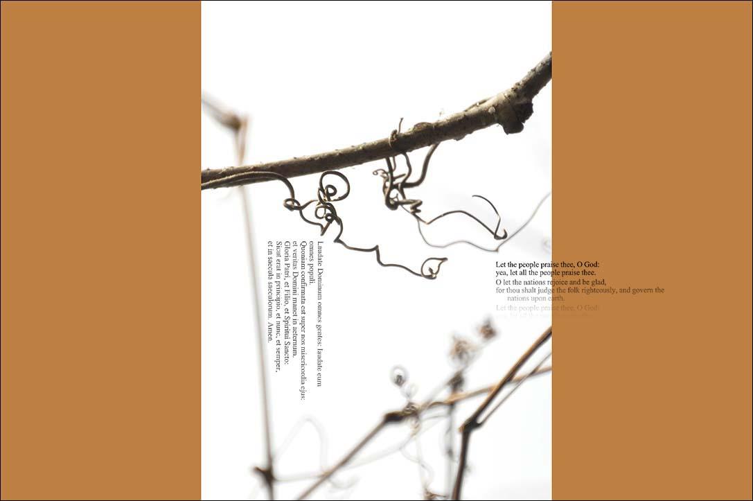 f0198771_022777.jpg