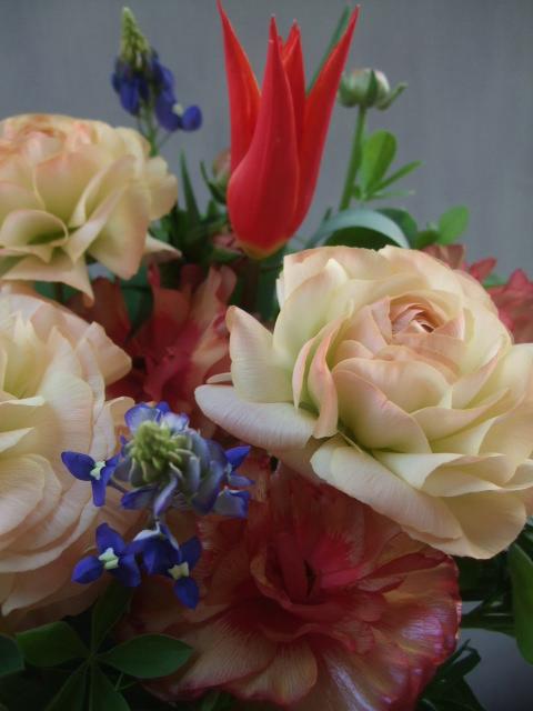 オークリーフ(赤い花)_f0049672_13455293.jpg